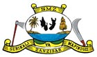 Serikali ya Mapinduzi ya Zanzibar
